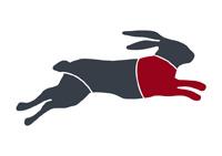 taglio-coniglio-anteriore