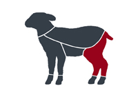 taglio-agnello-coscia
