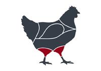 taglio-pollo-coscia