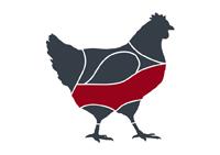 taglio-pollo-petto